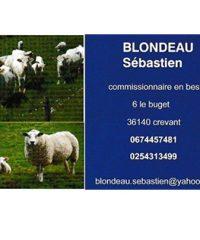 Commissionnaire en bestiaux