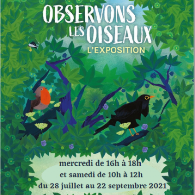exposition «Observons les oiseaux»